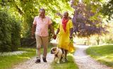 A retirement-aged couple hold hands and walk their dog through the park.